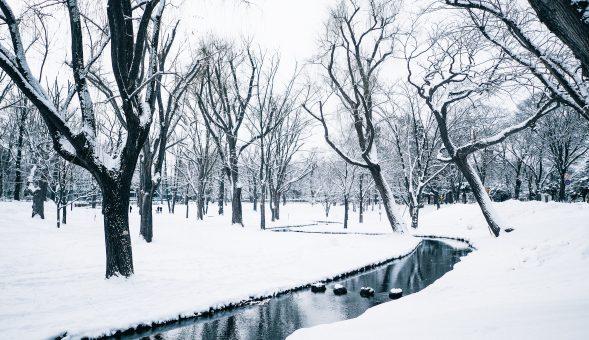 如何面對嚴冬?